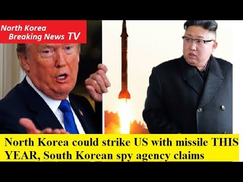 North Korea could strike US with missile THIS YEAR, South Korean spy agency claims