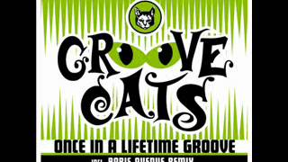 Groove Cats - Once In A Lifetime Groove