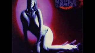 The Atomic Bitchwax - The Formula