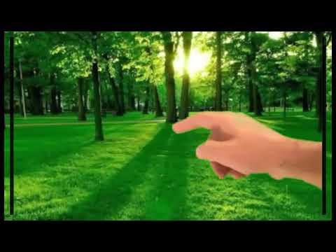 Green Screen Minion Dan Lagu Jalan-jalan Tilik Sedulur HIZFILA KEREEN!!!