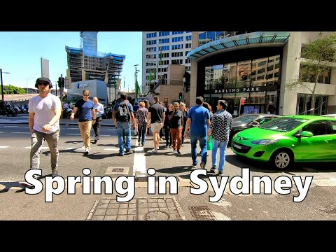 Spring In Sydney Australia - Walking From QVB Shopping Centre To Darling Harbour (October 2019)