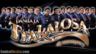 Banda la Trakalosa de Monterrey- Doble Vida (Audio)