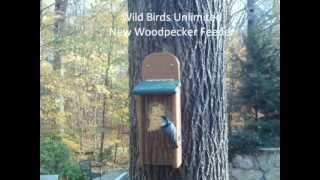 Wild Birds Unlimited - TreeNutty Woodpecker Feeder