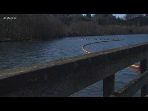 Oil spill cleanup continues in Tumwater days later
