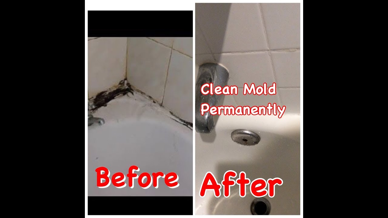 How To Clean Mold Safely And Easily