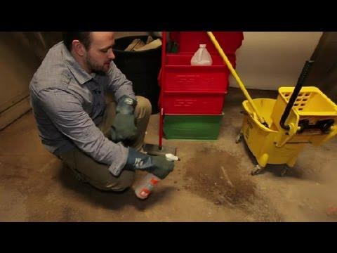 How do i clean mildew on concrete floors bathroom for How do i clean concrete