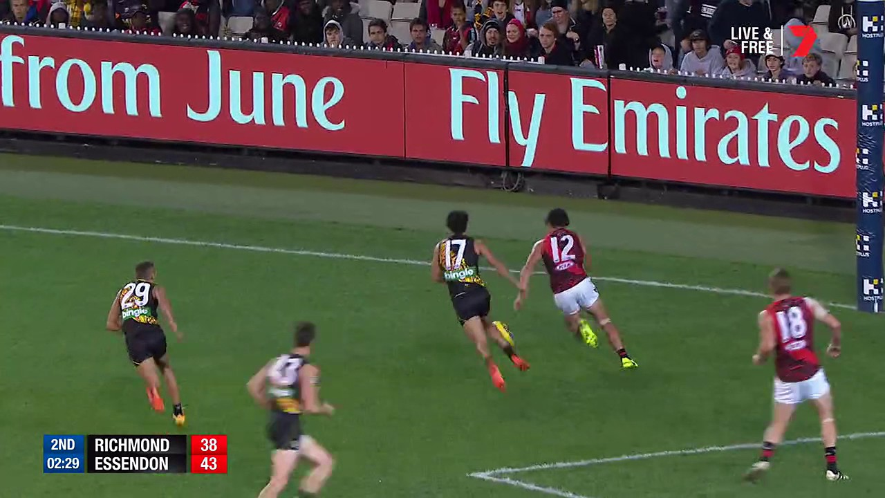 essendon vs richmond - photo #17