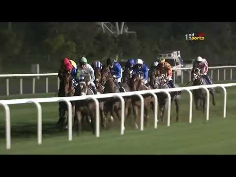 كاس دبي العالمي للخيول | الشوط السادس - Blair House - الأمسية السابعة