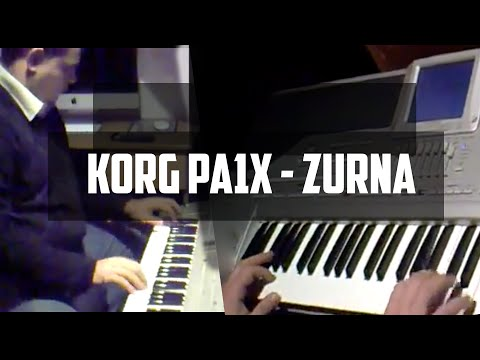 KORG PA1X - ZURNA
