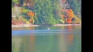 Fly Fishing on Salt Spring Island