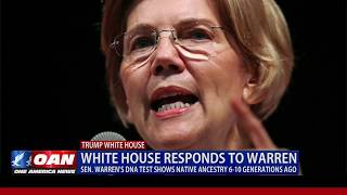 White House responds to Sen. Warren's DNA test results