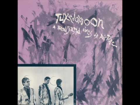 Tuxedomoon Dark Companion