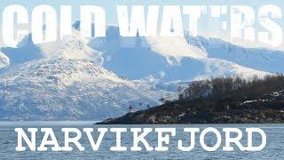 Video Cold Waters: Narvikfjord download MP3, 3GP, MP4, WEBM, AVI, FLV November 2017