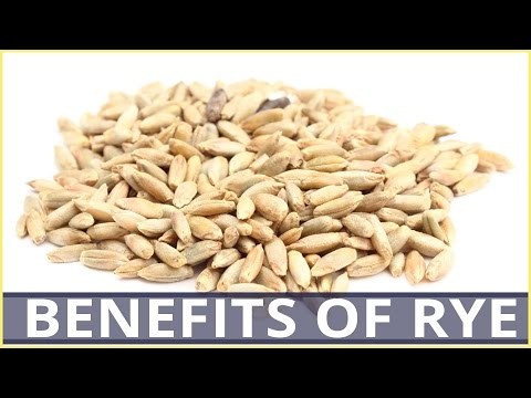 6 Best Health BENEFITS OF RYE CEREAL