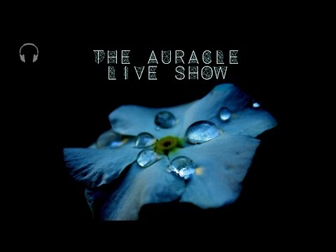 The Auracle Live Stream 25th Feb 23:30 GMT Late night chill, mouth sounds, tapping and more...