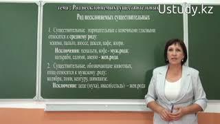 Подготовка к ЕНТ (Русский язык):  Род несклоняемых существительных