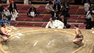 新ネタ、新コンビ!初っ切り!(Shokkiri,comic sumo)(平成25年10月6日、高見盛断髪式 Takamisakari retirement ceremony,Shokkiri)