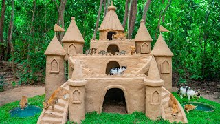 Cat Rescue From Danger Place Feeding Cat And Build the Cat Castle House From Mud