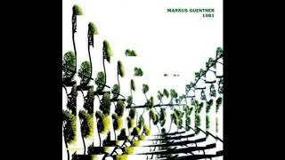 Markus Guentner - Wenn Musik der Liebe Nahrung ist
