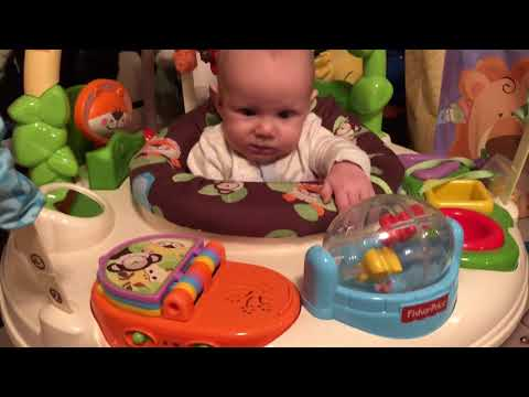 Fisher-Price Jumperoo Go Wild Activity Center Review