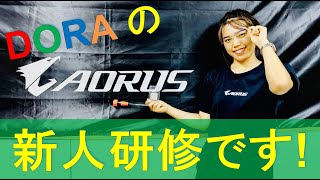 AORUS TV W79 『新人 Dora さんの自作 PC 研修』