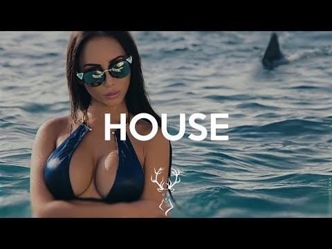 Best House Music 2018 #9