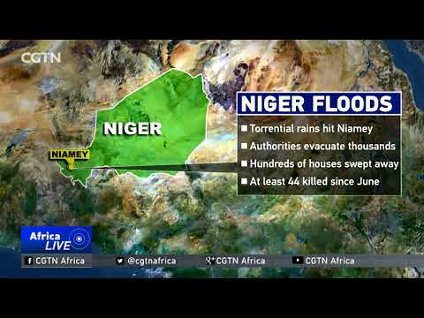 Thousands evacuated in Niger as torrential rains hit Niamey