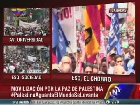 Ministros y líderes sociales venezolanos expresan su apoyo a Palestina