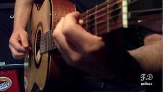 f.d. guitars