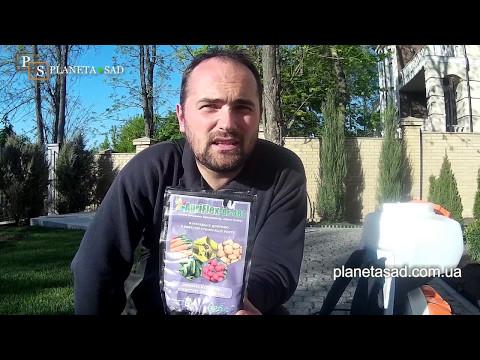 Вопрос: Чем и когда обрабатывать от вредителей хвойные растения?
