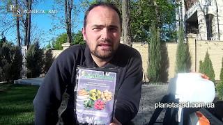 видео Вредители хвойных и плодовых деревьев
