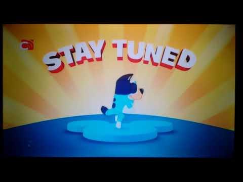 Bluey - Stay Tuned (Mickey Mornings) - Disney Junior Asia