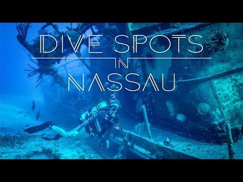 Best Dive Spots in Nassau | Living the Salt Life