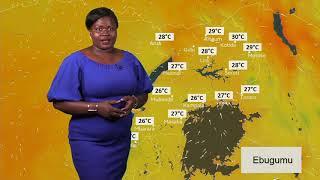 Embeera y'obudde nga 14 12 2018 ne Agnes Nalukwago