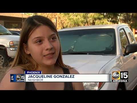Phoenix police K-9 killed, suspect taken into custody following pursuit