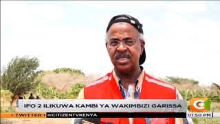 Kambi yageuka shamba