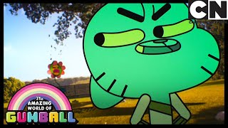 The Flower | Gumball | Cartoon Network
