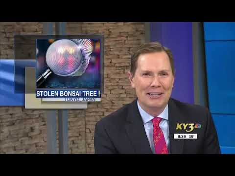 Cliff Bennett - Newscaster Can't Stop Laughing At Bomb Threat Story!