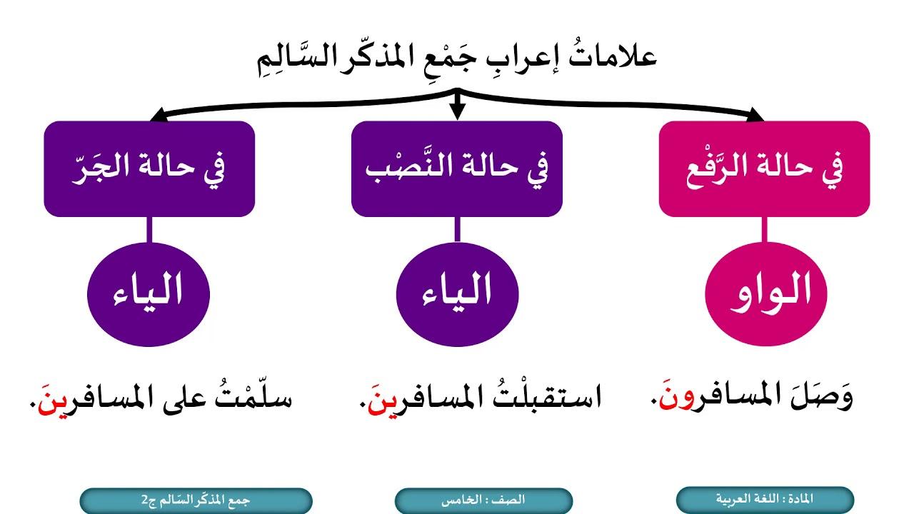 الصف الخامس اللغة العربية جمع المذكر السالم ج2 Youtube