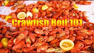 ANNUAL 2019 CRAWFISH BOIL ~ Basic Crawfish Boil 101