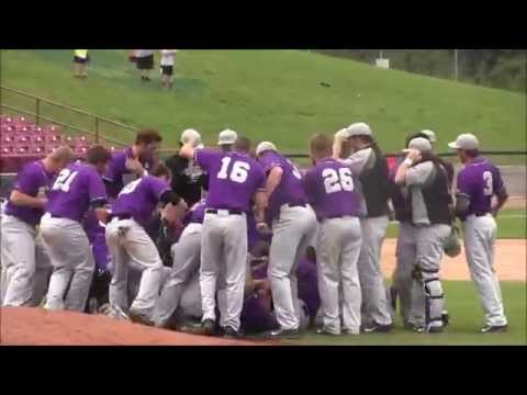 UW-Whitewater baseball dogpile: 2014 Division III World Series