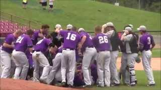 UW-Whitewater baseball dogpile: 2014 Division III World Series
