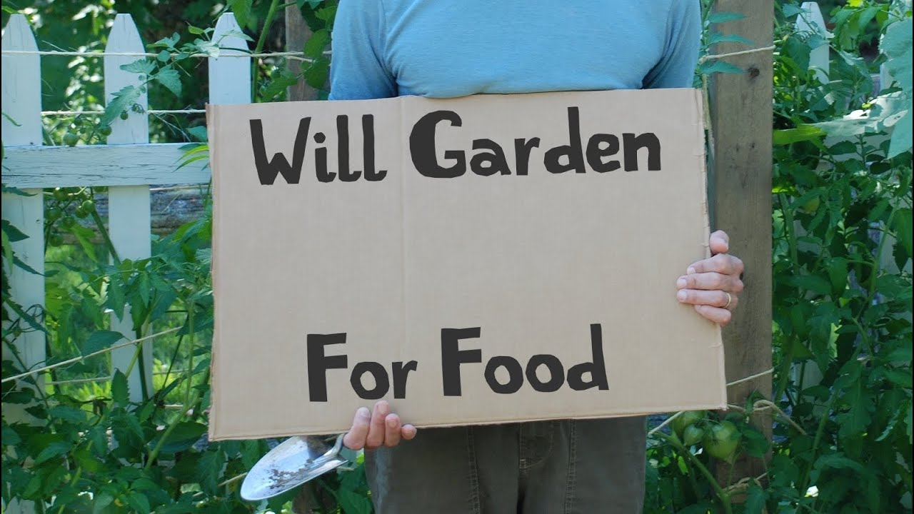 Kitchen Garden International Kitchen Gardeners International Youtube