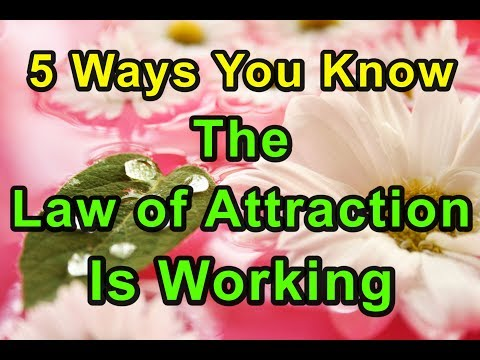 5 Ways to Know the Law of Attraction Is Working for You
