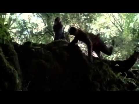 Merlin Season 5 Episode 8 The Hollow Queen Trailer