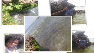 vuclip VLOG Praia do Portinho MARAVILHOSA - Itapuã Salvador #VEDA