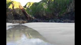 Lizard Point 4.mp4
