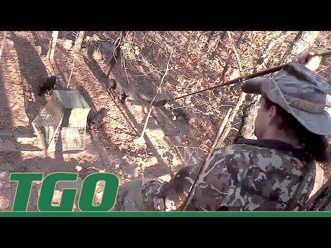 TGO | Wild Boar Spear Hunting Adventure