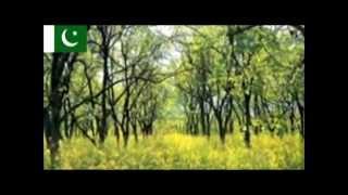 Reh Khushiyan Manda Malika {Pakistan Song} by Alam Lohar