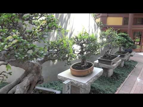 Nan Lian Garden Entry